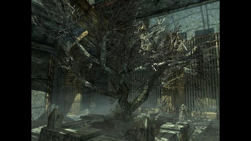 TES V Skyrim В Нчуанд-Зел, Утесную пещеру, и куда еще успеем до прихода человека-перфо ...