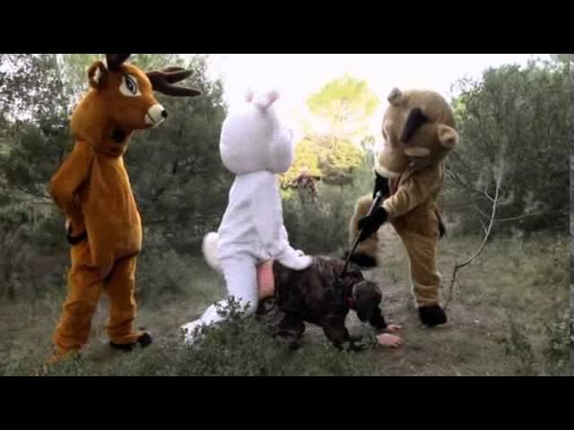 Звери наказывают охотника! Ролик из WTF Какого черта