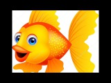 Золотая рыбка Детские Песни