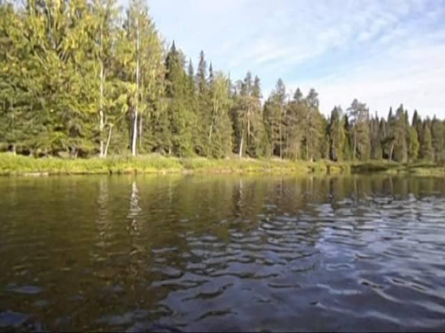 Река Юла Архангельская область. Сплав на байдарке. Осень 2013