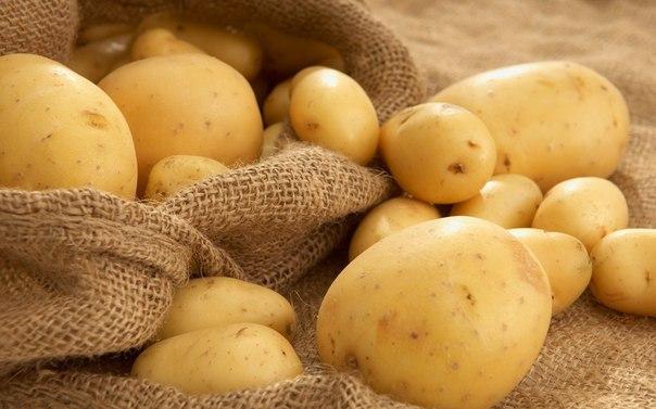 11 сытных продуктов, помогающих