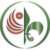 Академия Культурных и Образовательных Инноваций