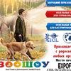 Выставка собак в СПб, Чемпионат Армении