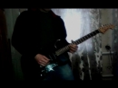 Apocalyptica ft TDG - I Dont Care guitar cover