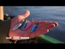 Календарь рыболова с 2 по 9 октября 2017 года от телеканала Трофей