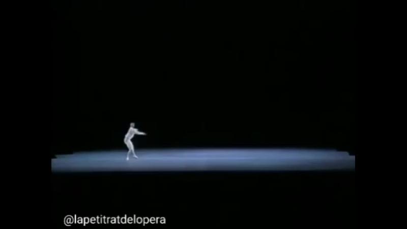 Rolando Sarabia in Tchaikovsky PDD varation. instagram.com/p/BV5byjHA_QM/ source: lapetitratdelopera