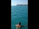 Дельфин и человек :)