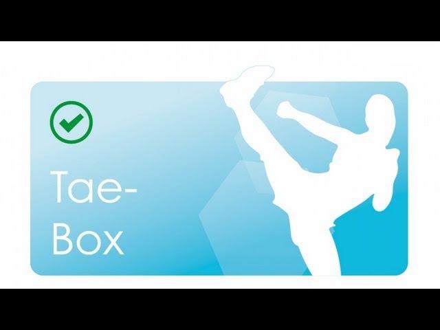 Ausdauer Kondition 02: TaeBox mit Linda 30 Minuten