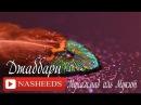 НАШИД NASHEDS Джаббари с музыкой Мухаммад аль Мукит