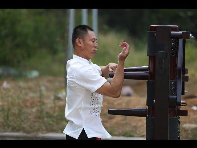 Wing Chun Master | Master Dong | Dragon Mountain Kung Fu Academy