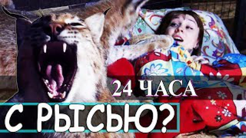 НОЧЬ В КЛЕТКЕ С РЫСЬЮ ! 24 ЧАСА ЧЕЛЛЕНДЖ