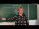 Психология развития личности мотиваторы потребности тормоза и грабли Лекция № 44