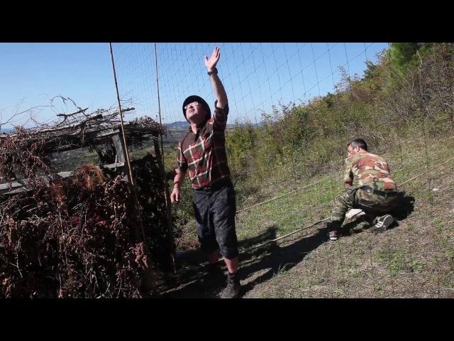 Охота на ястреба и с ястребом Hunting for hawk and hunting with hawk