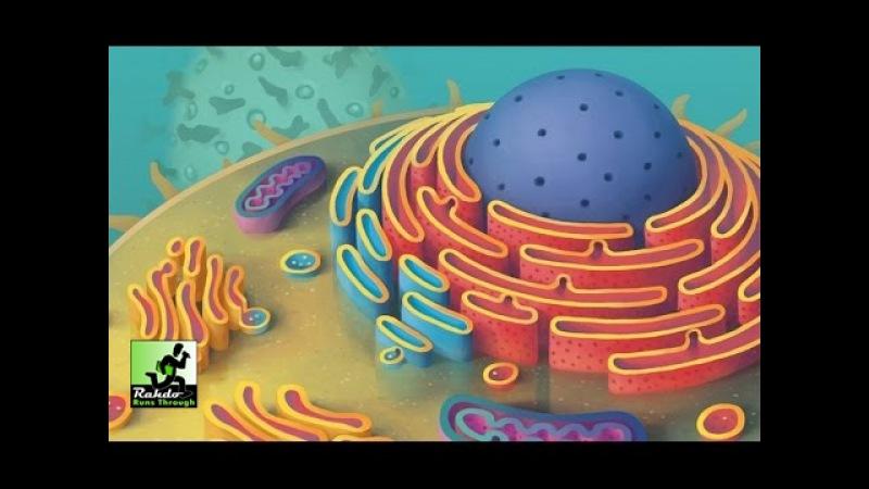 Cytosis Gameplay Runthrough