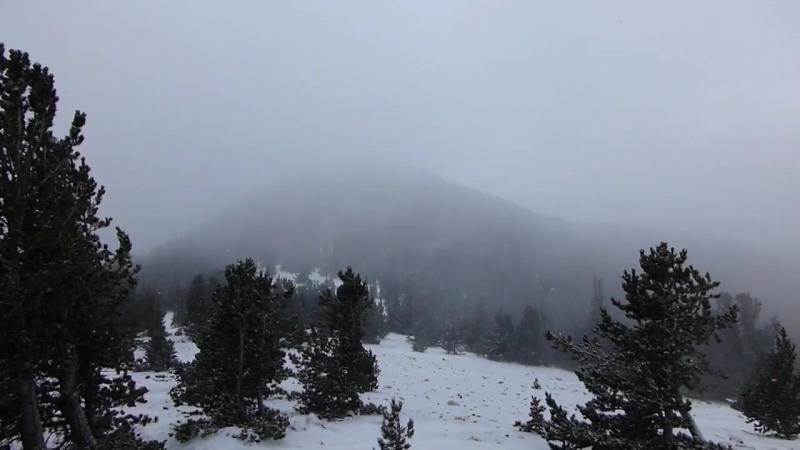 Deafest Snowfall At Dusk 2017