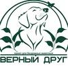 """Приют для бездомных животных """"ВЕРНЫЙ ДРУГ"""" в СПб"""