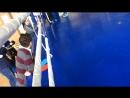 м.Львів. Турнір сильніших кікбоксерів серед юнаків та дівчат! Лозинський Володимир пів фінал (лайт-контакт)! 27.05.2017