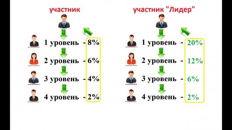 № 5 Разбор видов прибыли для партнеров