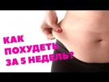 Как похудеть за 5 недель Эксперимент Slivki.by