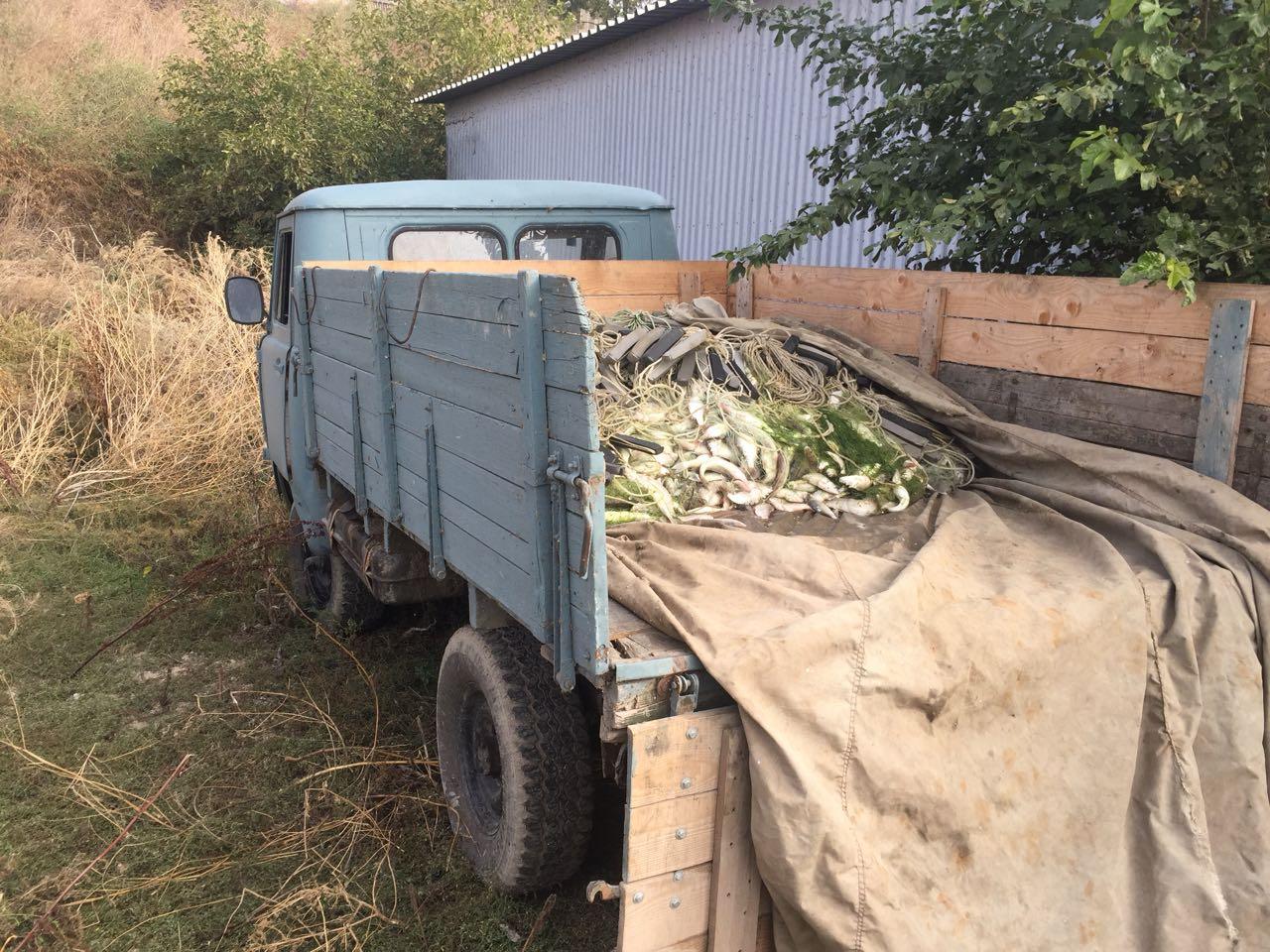 Пограничный наряд управления ФСБ задержал браконьеров в Петрушино с 500 кг шемаи