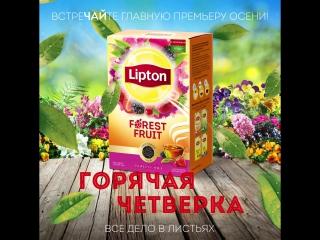 Мировая премьера   Lipton