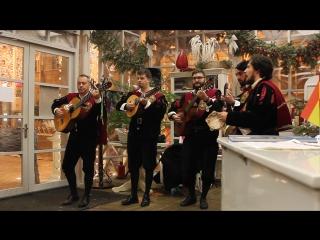 Концерт Туны Университета Саламанки из Испании