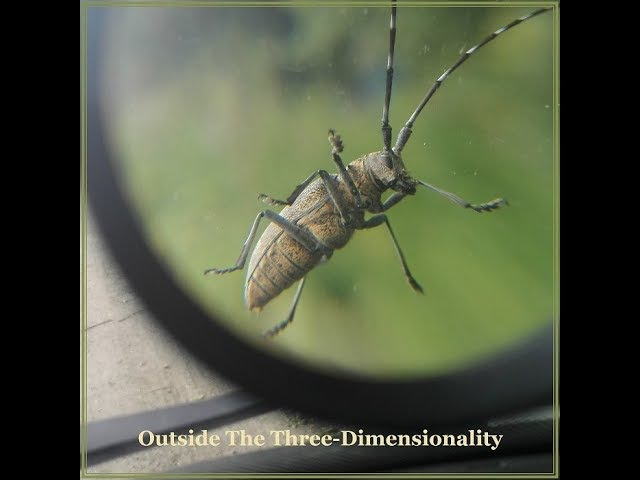 Tzytz - Outside The Three-Dimensionality