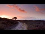 Henry Saiz &amp Cora Novoa - Golden Dawn HD