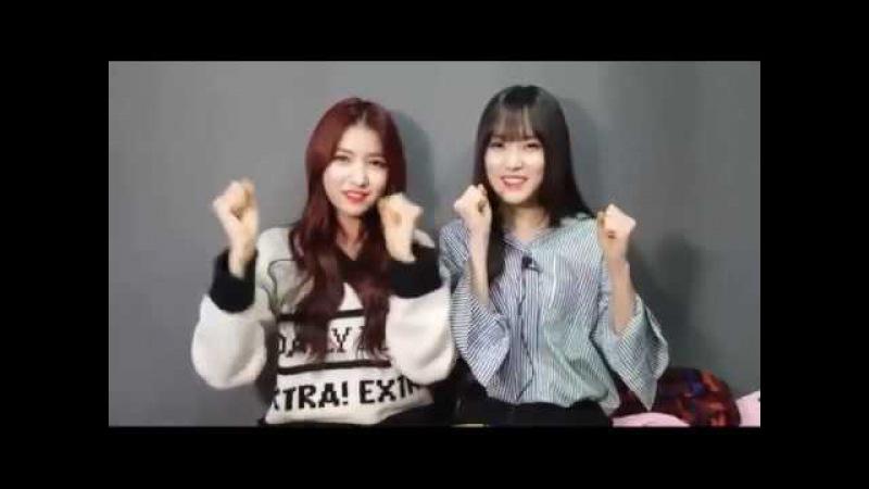 GFRIEND(여자친구) Sowon(소원) Yuju(유주) 170303 기부박수 337 릴레이 Donation Relay