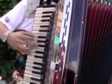 German Folk Song #coub, #коуб