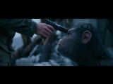 War for the Planet of the Apes All About Caesar