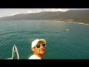 Морские прогулки с дельфинами на скоростном катере Багратион с Фёдором Косых Абхазия г Гагра