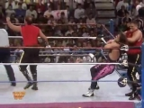 WWF Royal Rumble 1994 - The Quebecers vs Bret Hart and Owen Hart (WWF Tag Team Championship)