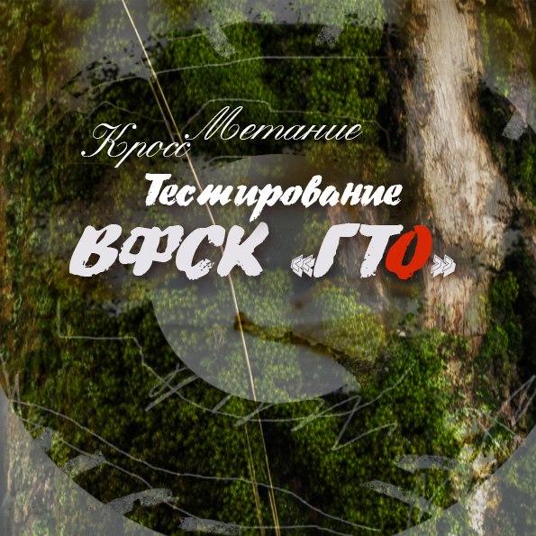 Тестирование ВФСК ГТО