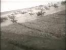 Всадники (фильм о гражданской войне по мотивам романа Ю. Яновского, 1939)