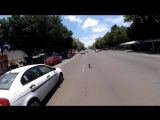 Погоня за собакой в Мехико