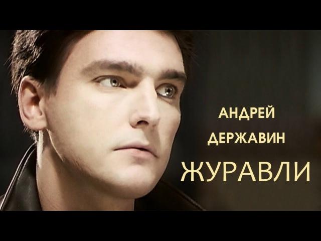 Андрей Державин Журавли