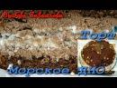 Торт Морское ДНО-шоколадный с прослойкой безе!/Cake Sea BOTTOM - chocolate with meringue!
