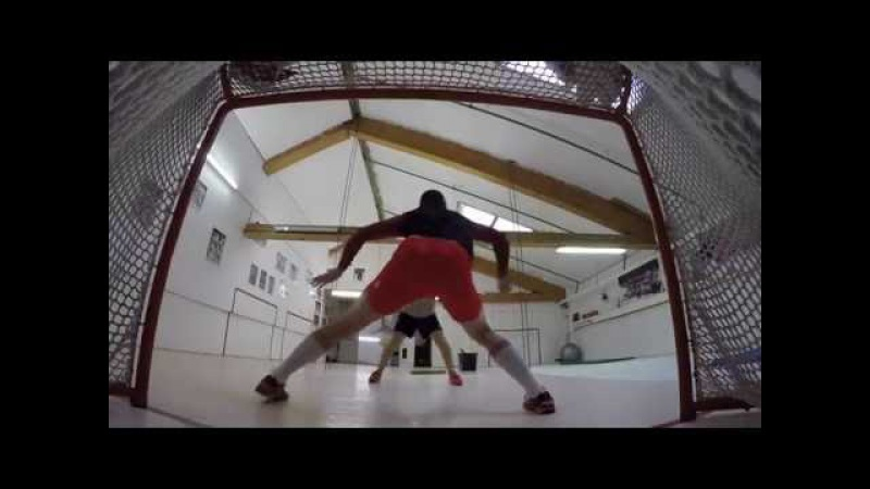 Goaltenders Summer Off Ice 2016 D. CIACCIO