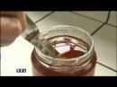 Reportage de TF1 sur la réussite du miel médical Melipharm