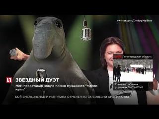 Певец и композитор Дмитрий Маликов спел со