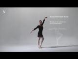Как узнать Джорджа Баланчина (9 языков современного танца)