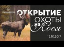 Открытие загонной охоты на лося 2017. Ленинградская область, п. Лебяжье.