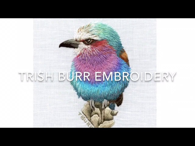 IRREGULAR LONG SHORT STITCH || EMBROIDERY TUTORIALS || TRISHBEMBROIDERY.COM
