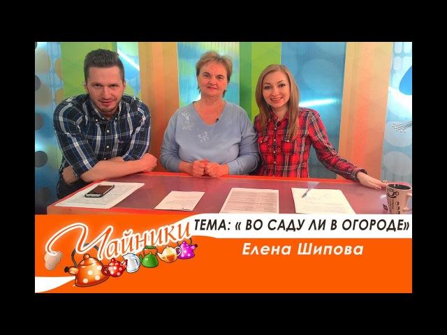 Чайники Эфир 7 06 17 тема во саду ли в огороде Елена Шипова