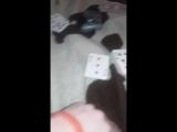 Brother and step sister strip poker Pt. 1 - Pornhub.com