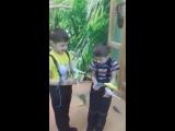 Ручной зоопарк (сити-молл)
