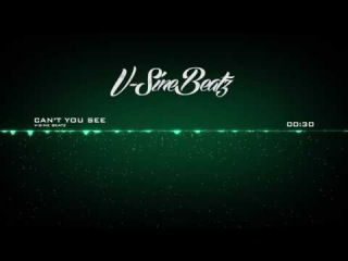 V-Sine Beatz - Can't You See (Miguel x DJ Premier Type Beat)