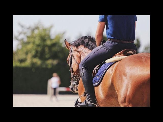 ~ Equestrian sport ~ Imagine Dragons – Believer ~ Конный спорт ~