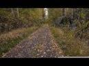 Пошла я как то по грибы, глядь - заброшенная военная техника в подмосковном лесу!